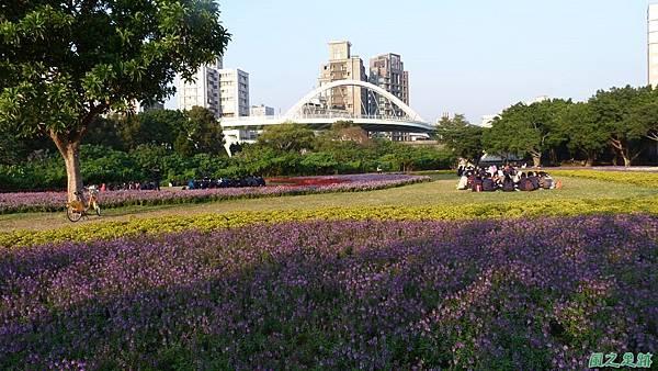北市河濱花海地景20131202(33)