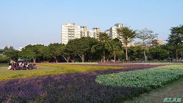 北市河濱花海地景20131202(35)
