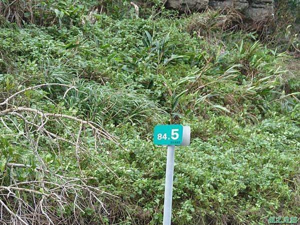 南雅山環行20131108(2)