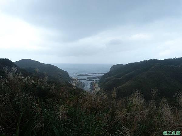 南雅山環行20131108(28)