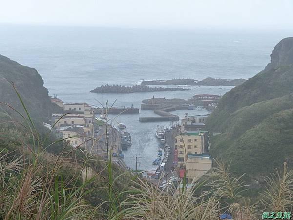南雅山環行20131108(29)