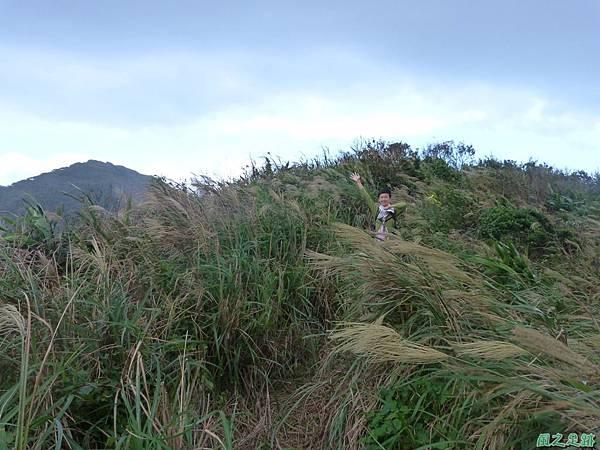 南雅山環行20131108(31)