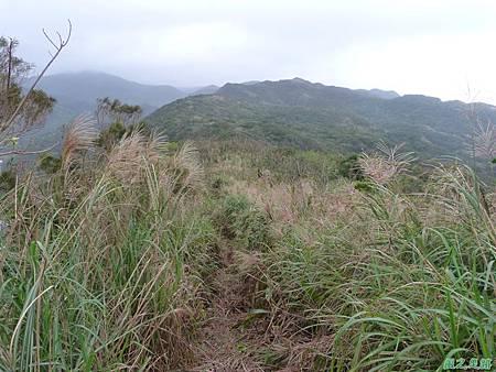 南雅山環行20131108(35)