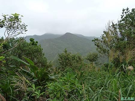 南雅山環行20131108(43)