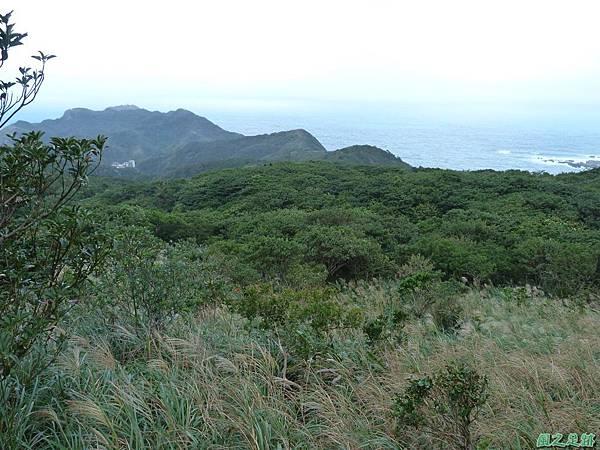 南雅山環行20131108(50)