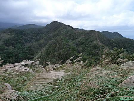 南雅山環行20131108(54)