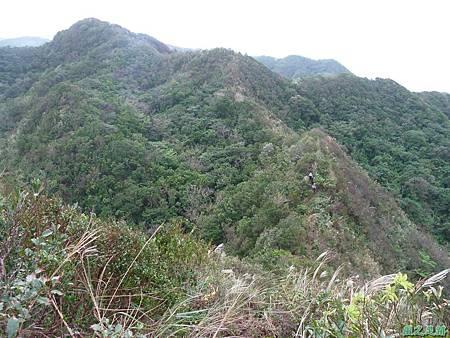 南雅山環行20131108(58)