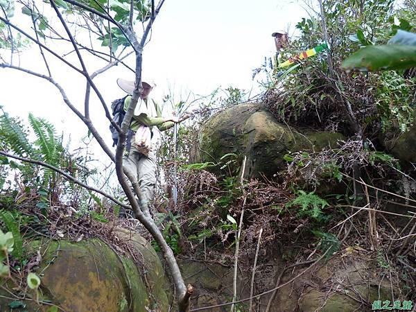 南雅山環行20131108(60)