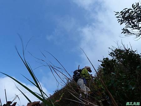 南雅山環行20131108(61)