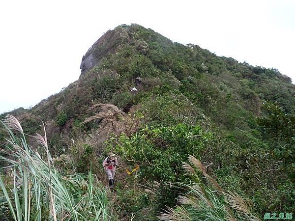 南雅山環行20131108(64)