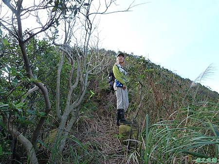南雅山環行20131108(68)