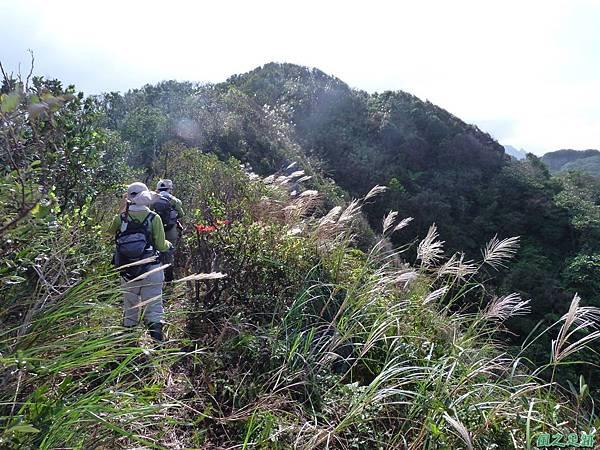 南雅山環行20131108(80)