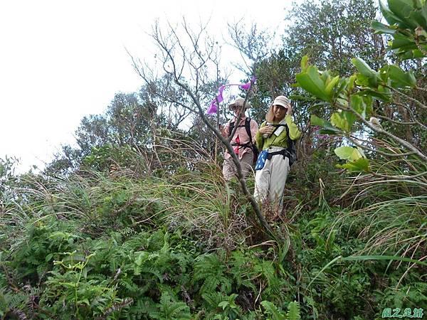 南雅山環行20131108(93)