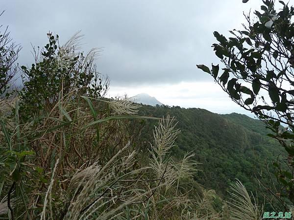 南雅山環行20131108(143).JPG
