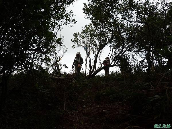 南雅山環行20131108(187).JPG