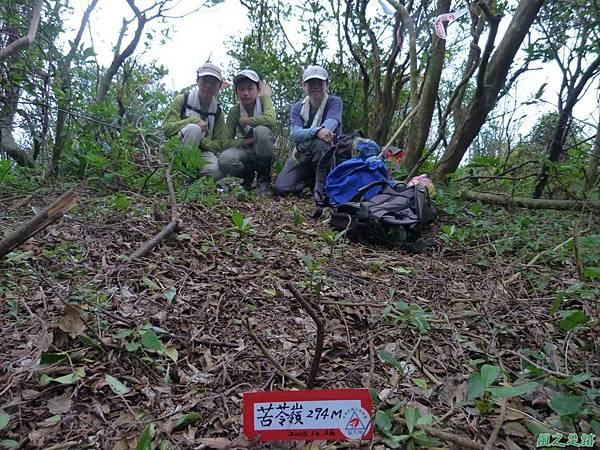 南雅山環行20131108(201)