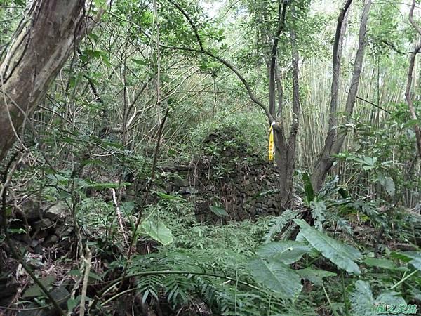 南雅山環行20131108(234)