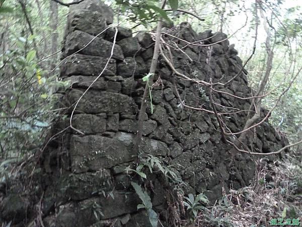 南雅山環行20131108(239)