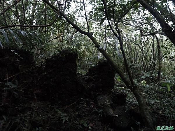 南雅山環行20131108(248)