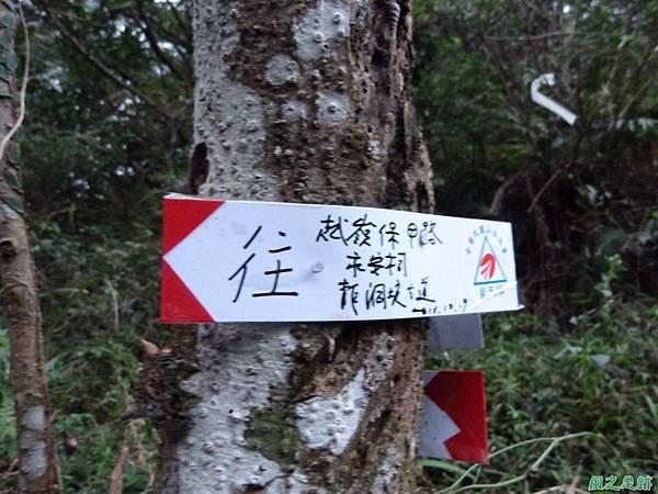 南雅山環行20131108(258)