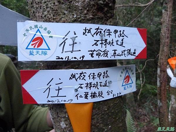 南雅山環行20131108(259)