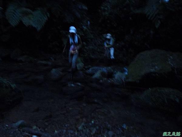 南雅山環行20131108(270)