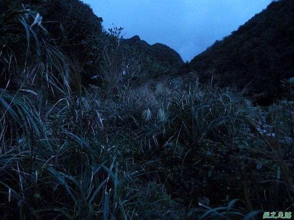 南雅山環行20131108(272)