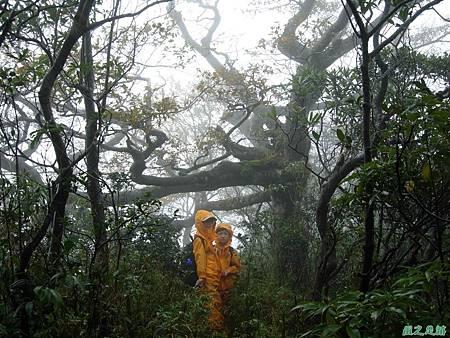 樂佩山20061028(14)