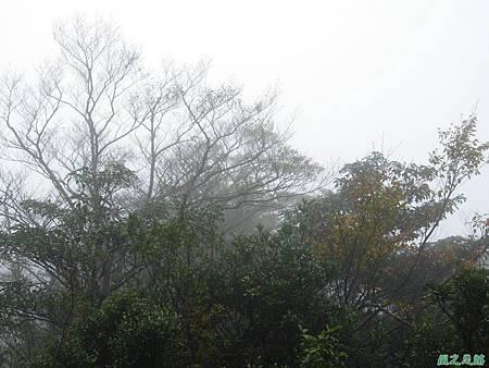 樂佩山20061028(15)