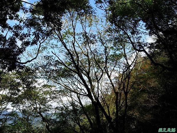 樂佩山20061028(40)