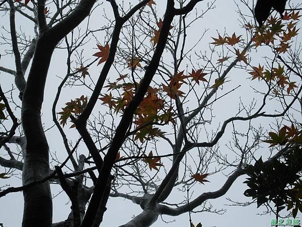 樂佩山20061028(57)