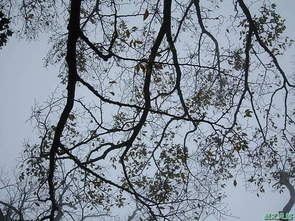樂佩山20061028(62)
