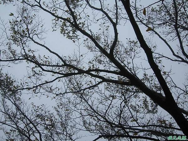 樂佩山20061028(63)