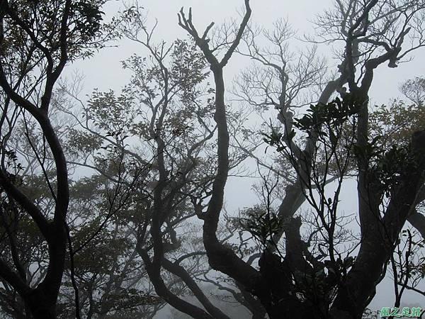 樂佩山20061028(85)