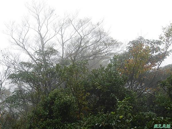 樂佩山20061028(91)