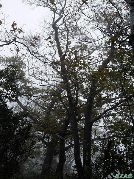 樂佩山20061028(92)