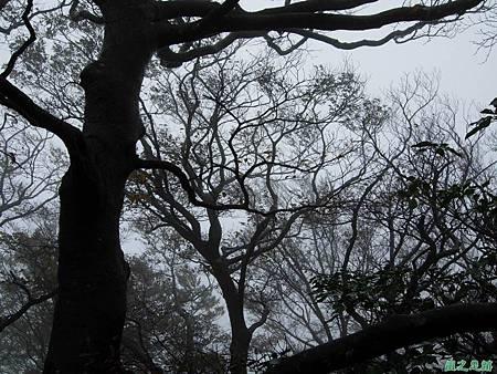 樂佩山20061028(101)