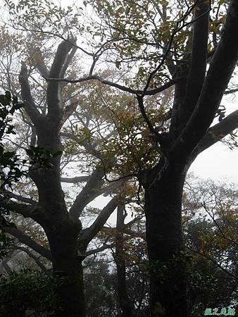 樂佩山20061028(103)