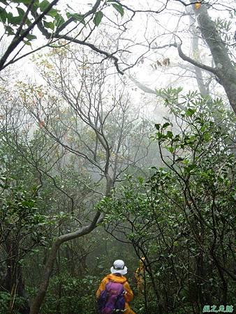樂佩山20061028(105)