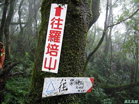 樂佩山20061028(111)