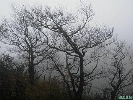 樂佩山20061028(117)