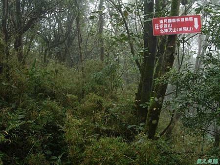 樂佩山20061028(139)