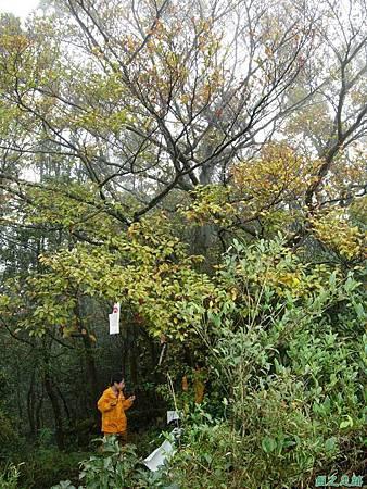樂佩山20061028(165)