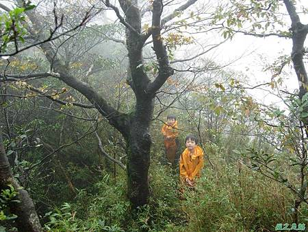樂佩山20061028(183)