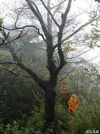 樂佩山20061028(184)
