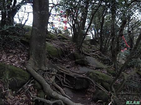 20131216鳶山(24)
