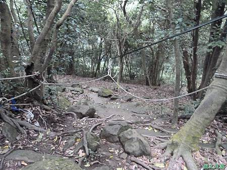 20131216鳶山(7)