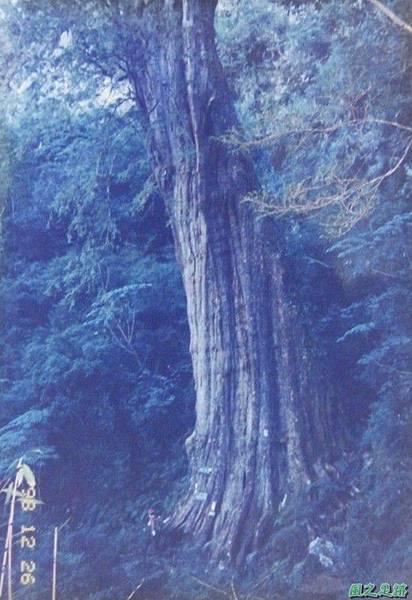 199812_北大武山(7).JPG