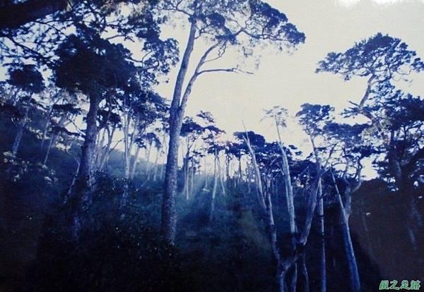 199812_北大武山(11).JPG