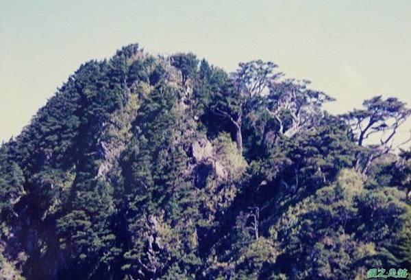 199812_北大武山(17).JPG